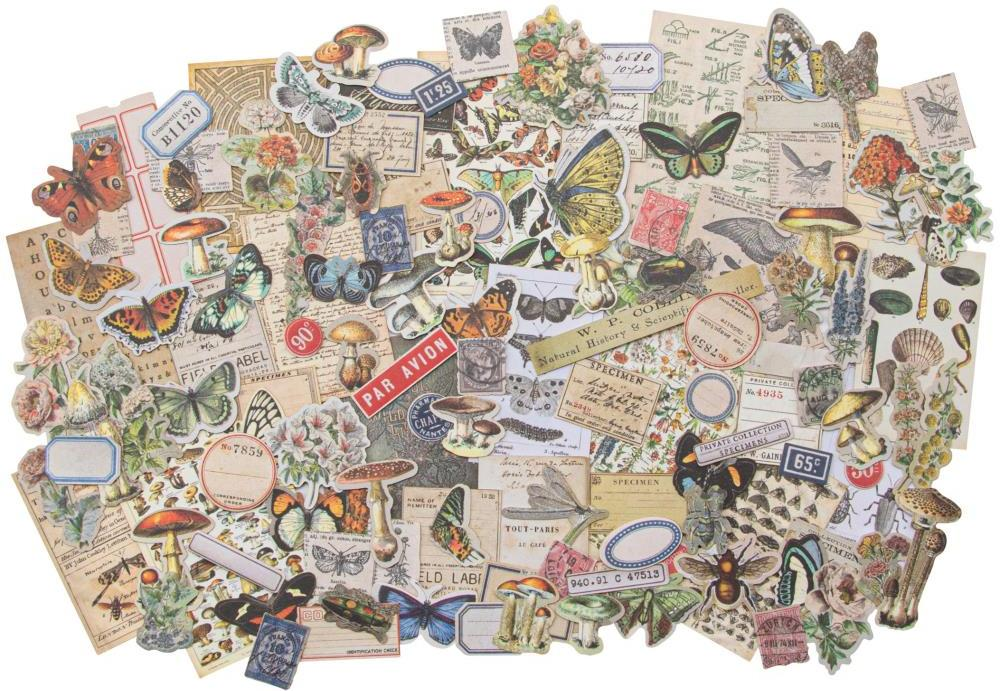 Idea-ology Tim Holtz Field Notes Ephemera Pack SNIPPETS (TH94049)