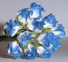 Flower Cards on Paper Flowers White Blue Mini Tulip 12 White Blue Tulips Flower Heads